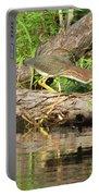 Green Heron Fishing 2 Portable Battery Charger
