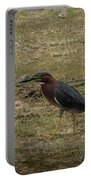 Green Heron In Central Texas Portable Battery Charger