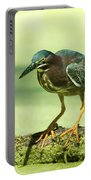 Green Heron In Green Algae Portable Battery Charger