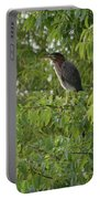 Green Heron In Tree Portable Battery Charger