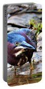 Green Heron Male Portable Battery Charger