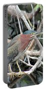 Green Heron On A Branch Portable Battery Charger