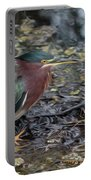 Green Heron Patience Portable Battery Charger