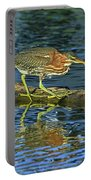 Green Heron Prowl Portable Battery Charger