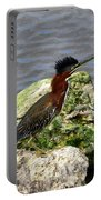 Green Heron Ruffled Feathers Portable Battery Charger