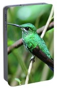 Green Crowned Brilliant Hummingbird Portable Battery Charger