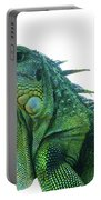 Green Iguana 1 Portable Battery Charger
