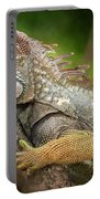Green Iguana Costa Rica Portable Battery Charger
