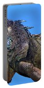 Green Iguana Portable Battery Charger