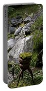 Green In Rock Garden Portable Battery Charger