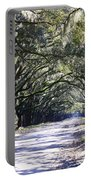 Green Lane Portable Battery Charger by Carol Groenen