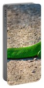 Green Lizard Portable Battery Charger