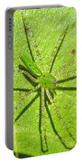 Green Lynx Spider Portable Battery Charger