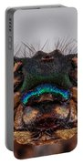 Green Metalwing Damselfly 4x Portable Battery Charger