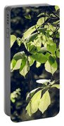 Green Mood 2 Portable Battery Charger