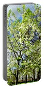 Green Park, London Portable Battery Charger