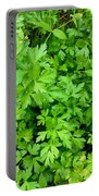 Green Parsley 1 Portable Battery Charger