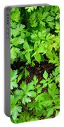Green Parsley 2 Portable Battery Charger