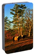 Green Pastures Portable Battery Charger