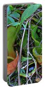 Northern Pitcher Plant Portable Battery Charger