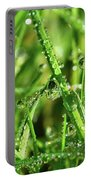 Green Rain Portable Battery Charger