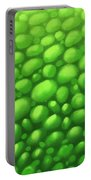 Green Scales Portable Battery Charger