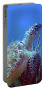 Green Sea Turtle 3 Portable Battery Charger