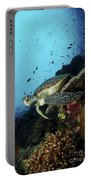 Green Sea Turtle Resting On A Plate Portable Battery Charger