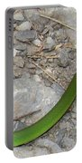 Green Snake Portable Battery Charger