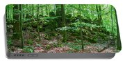 Green Stony Forest In Vogelsberg Portable Battery Charger
