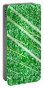 Green Streak Portable Battery Charger