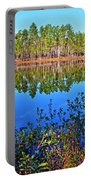Green Swamp In December Portable Battery Charger