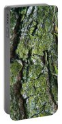 Green Tree Frog On Lichen Covered Bark Portable Battery Charger