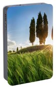 Green Tuscany Portable Battery Charger