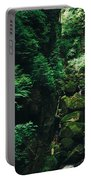 Green Waterfall Portable Battery Charger