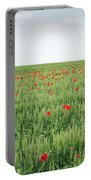 Green Wheat Field Spring Scene Portable Battery Charger