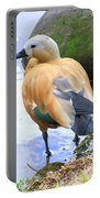 Green Winged Wood Duck 1 Portable Battery Charger