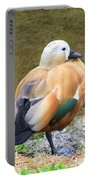 Green Winged Wood Duck 2 Portable Battery Charger