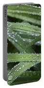 Green With Rain Drops Portable Battery Charger