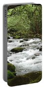 Greenbrier River Scene 2 Portable Battery Charger