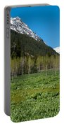 Greens And Blues Of The Maroon Bells Portable Battery Charger