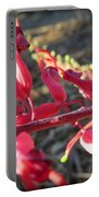 Grevillea Portable Battery Charger
