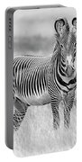 Grevy Zebra  5953bw Portable Battery Charger