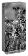 Grevy Zebra Party  7528bw Portable Battery Charger