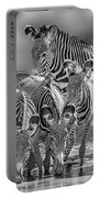 Grevy Zebra Party  7528bwc Portable Battery Charger