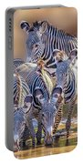 Grevy Zebra Party  7528c Portable Battery Charger