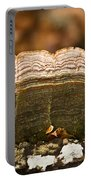 Grey Bracket Fungi Portable Battery Charger