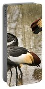 Grey Crowned Crain Of Africa 5 Portable Battery Charger