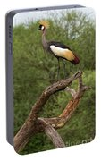 Grey Crowned Crane Portable Battery Charger by Yair Karelic