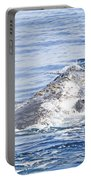 Grey Whale 2 Portable Battery Charger